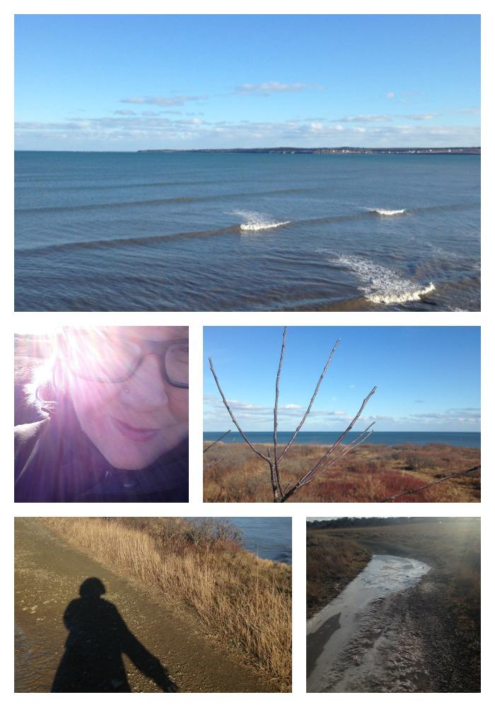 January Ocean Walk